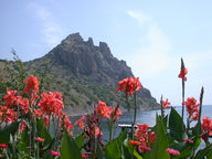Крым - курортная жемчужина.  Летний отдых в Крыму можно сравнить с пребыванием в.